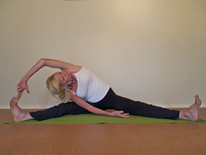 Hatha Yoga    Beginners and more experienced students all work together to bring about a state of harmony and well-being to body and mind