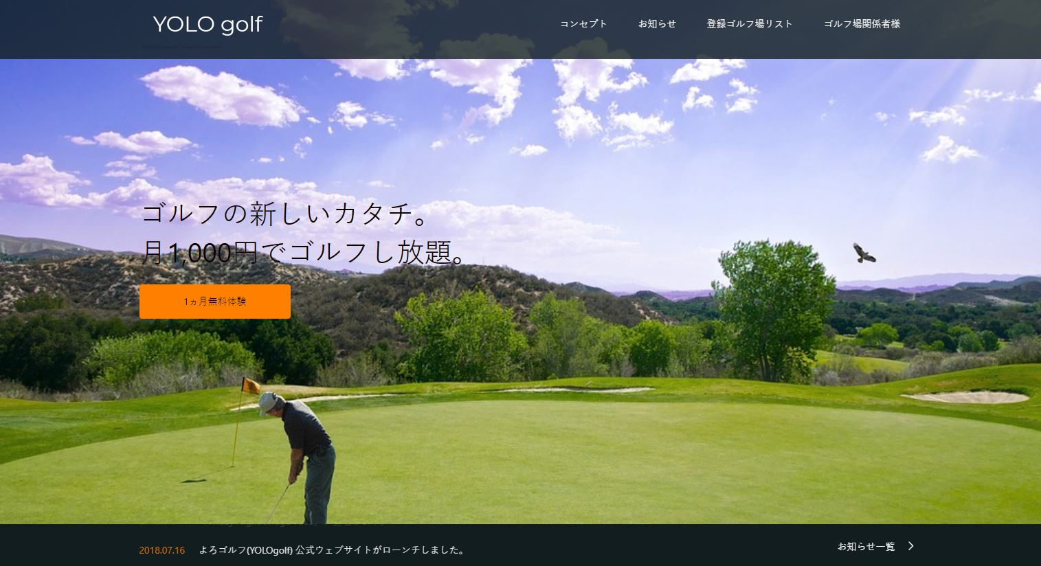 YOLOgolf-top.JPG