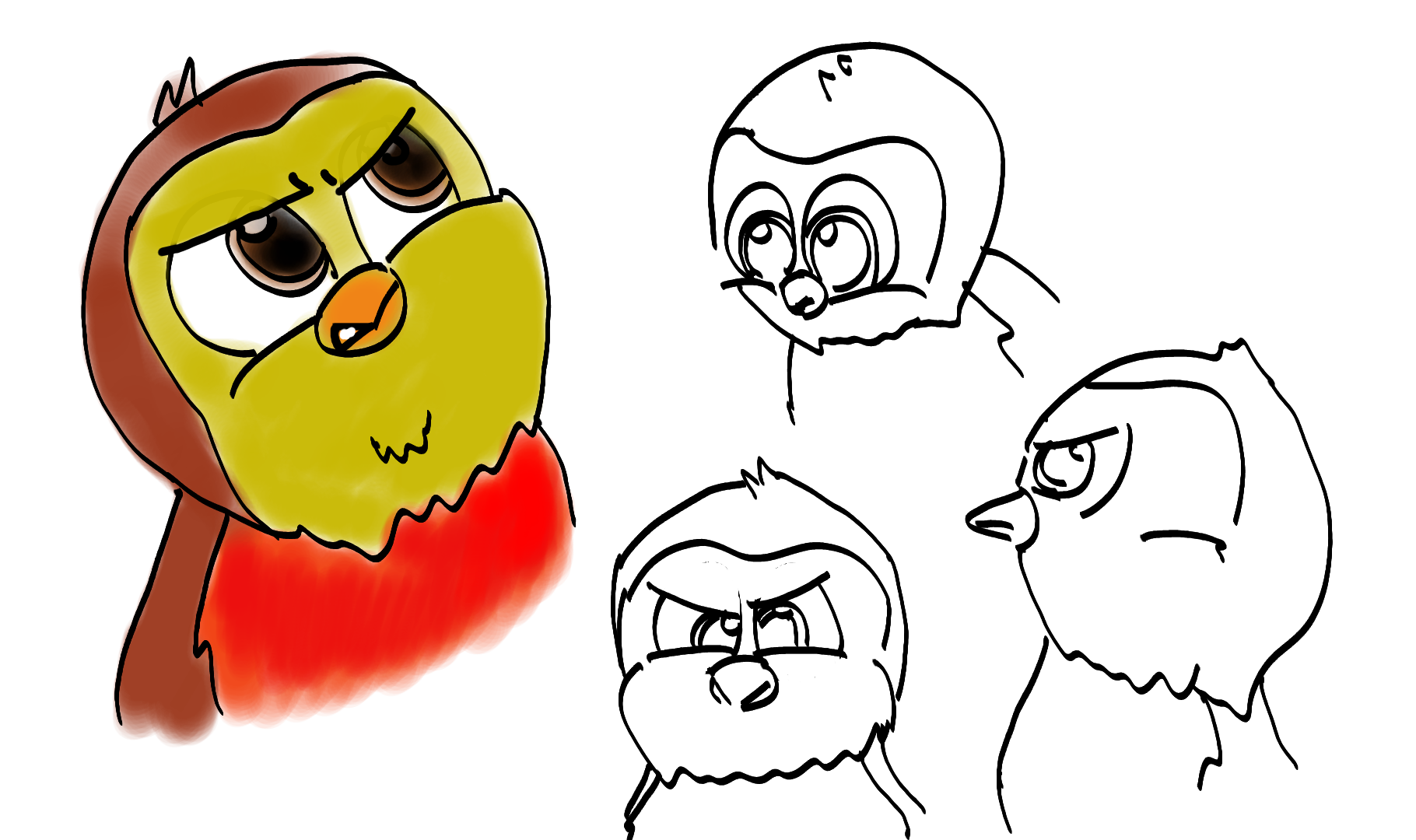 Robin Angry