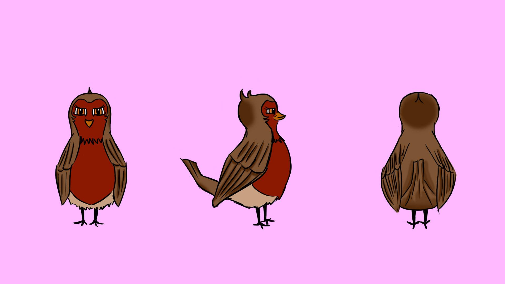 Female Robin Turnaround