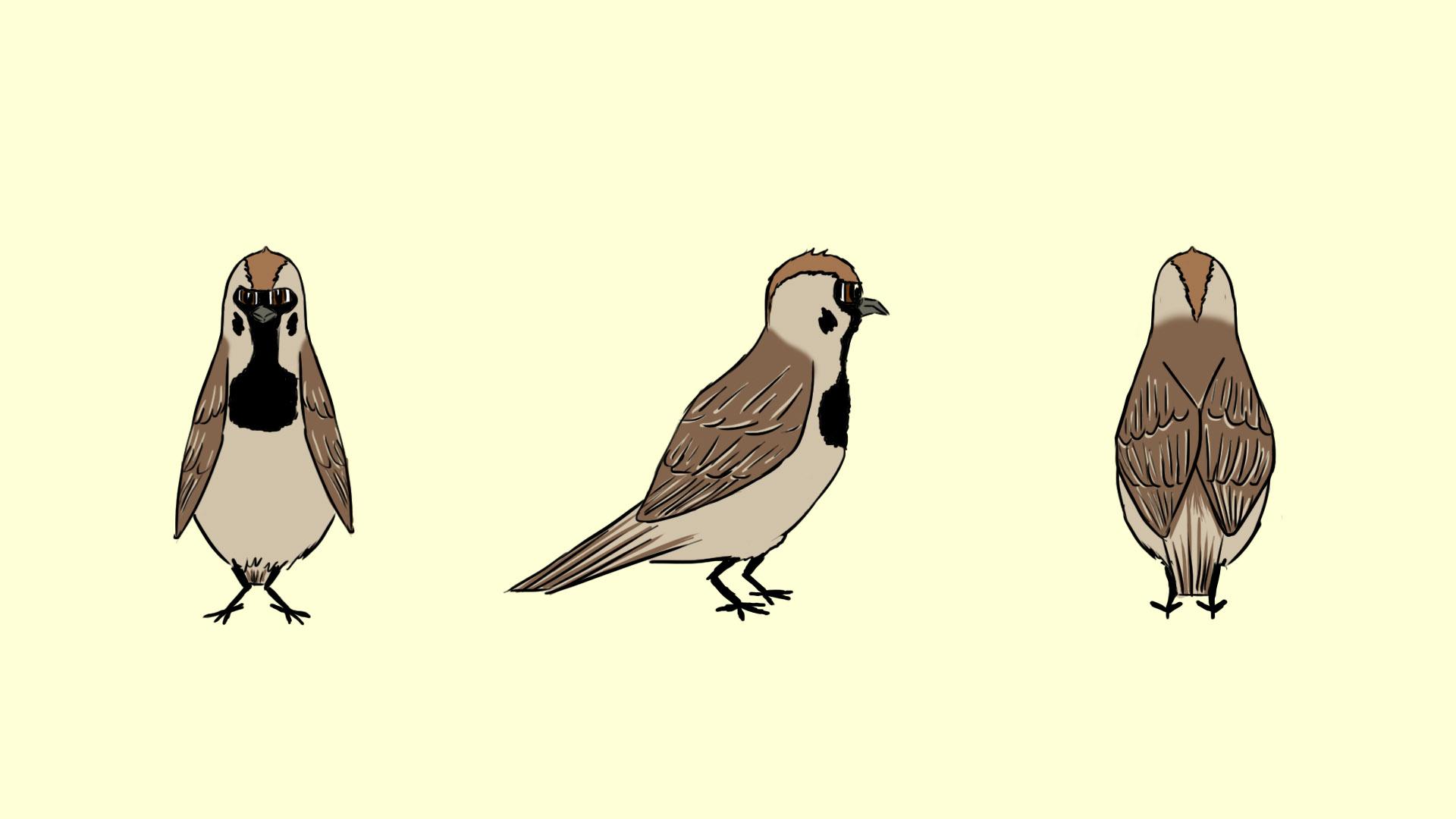 Sparrow Turnaround