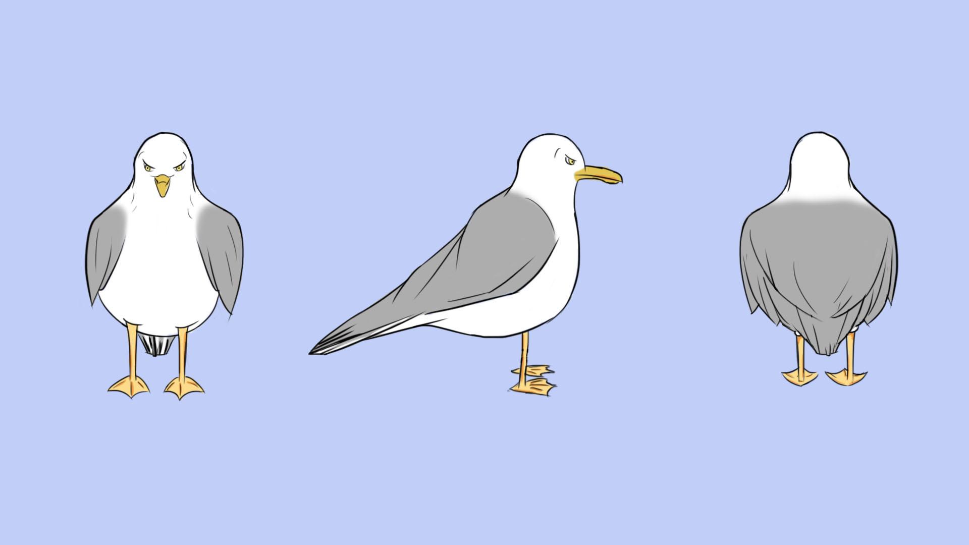 Angry Seagull TurnAround