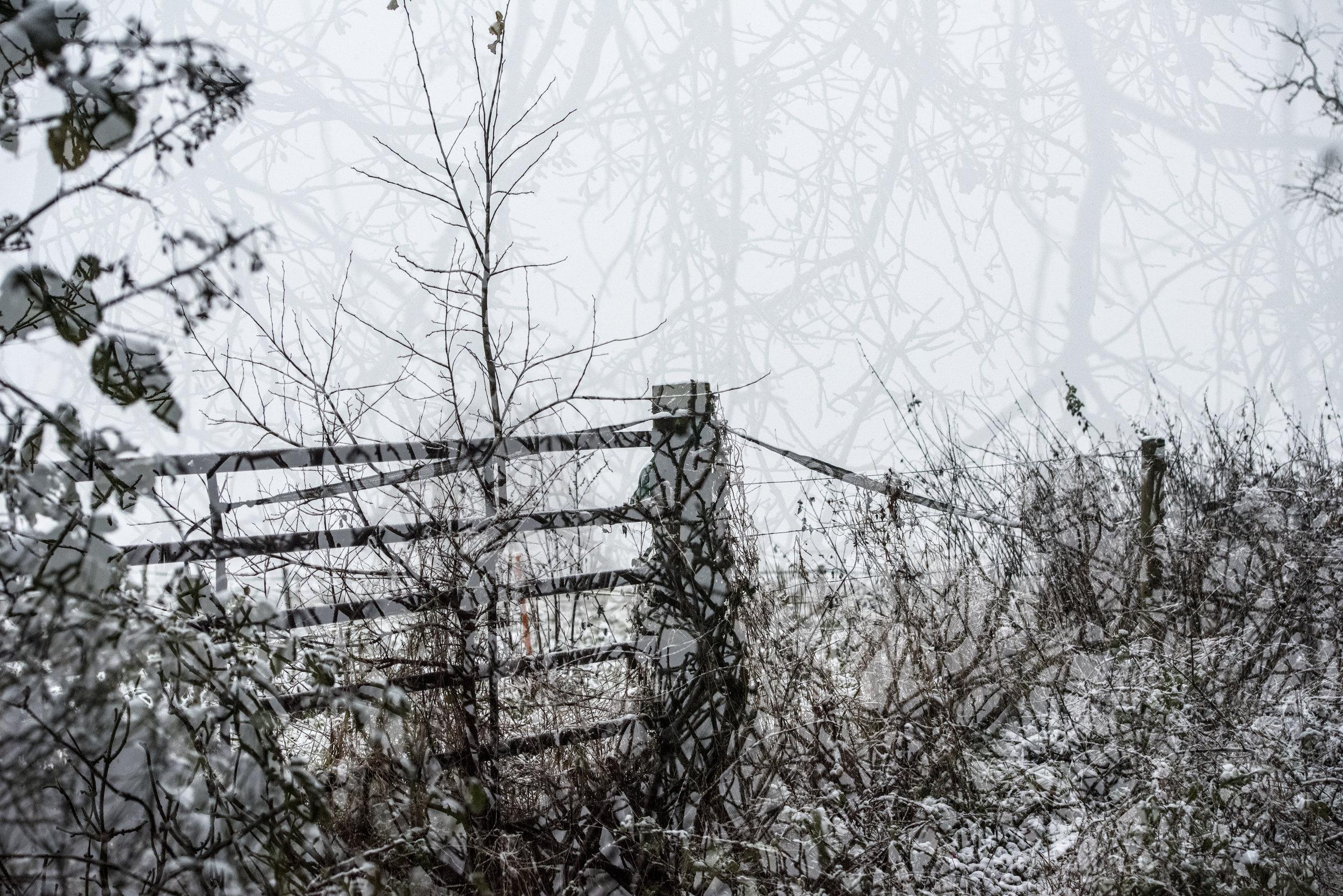 Snow gate.jpg