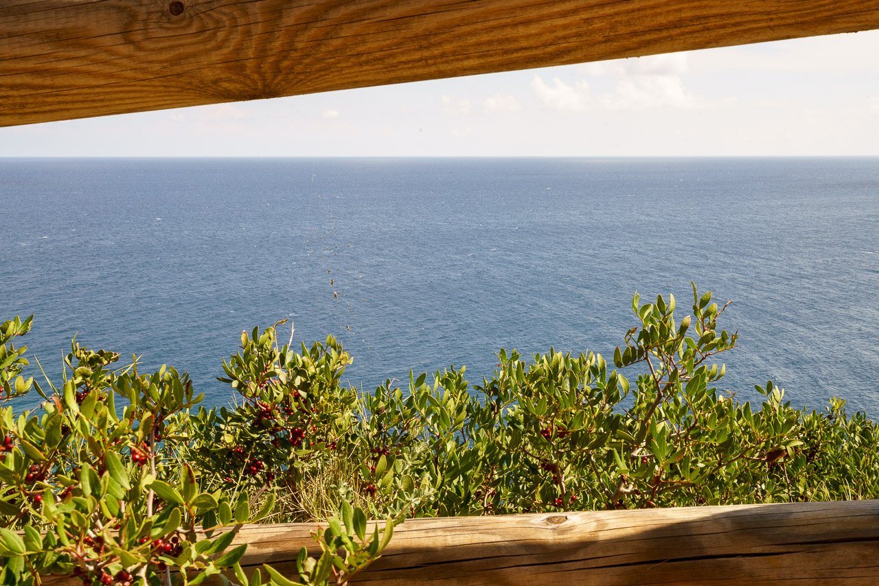 Punta Palacia BeeYond Travel - 39.jpg