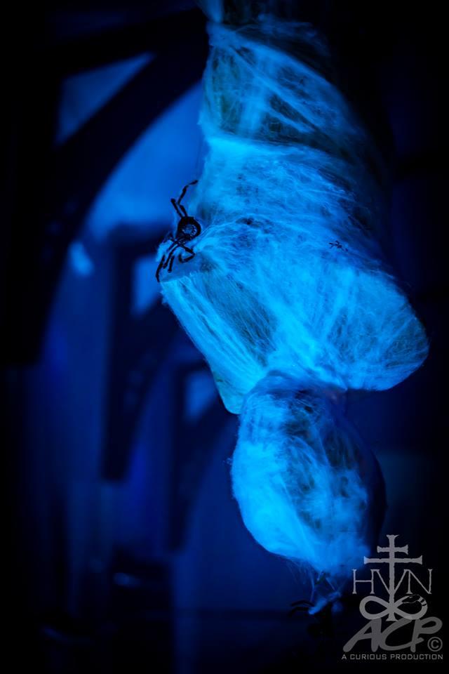 TheHavenClub-Goth-Industrial-Dance-Alternative-Northampton-MA -Halloween 2018 (109).jpg