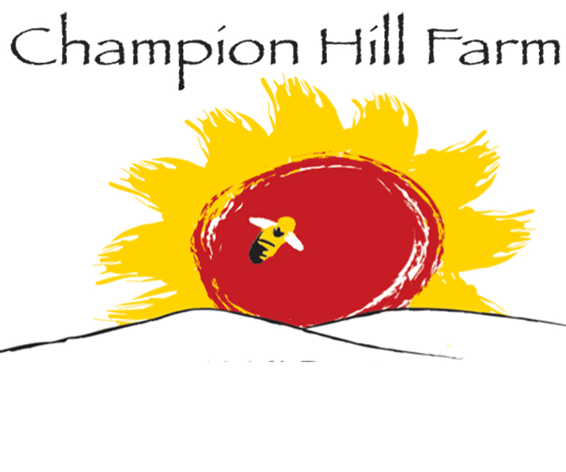 Copy of CHF logo_edited-1 copy.jpg