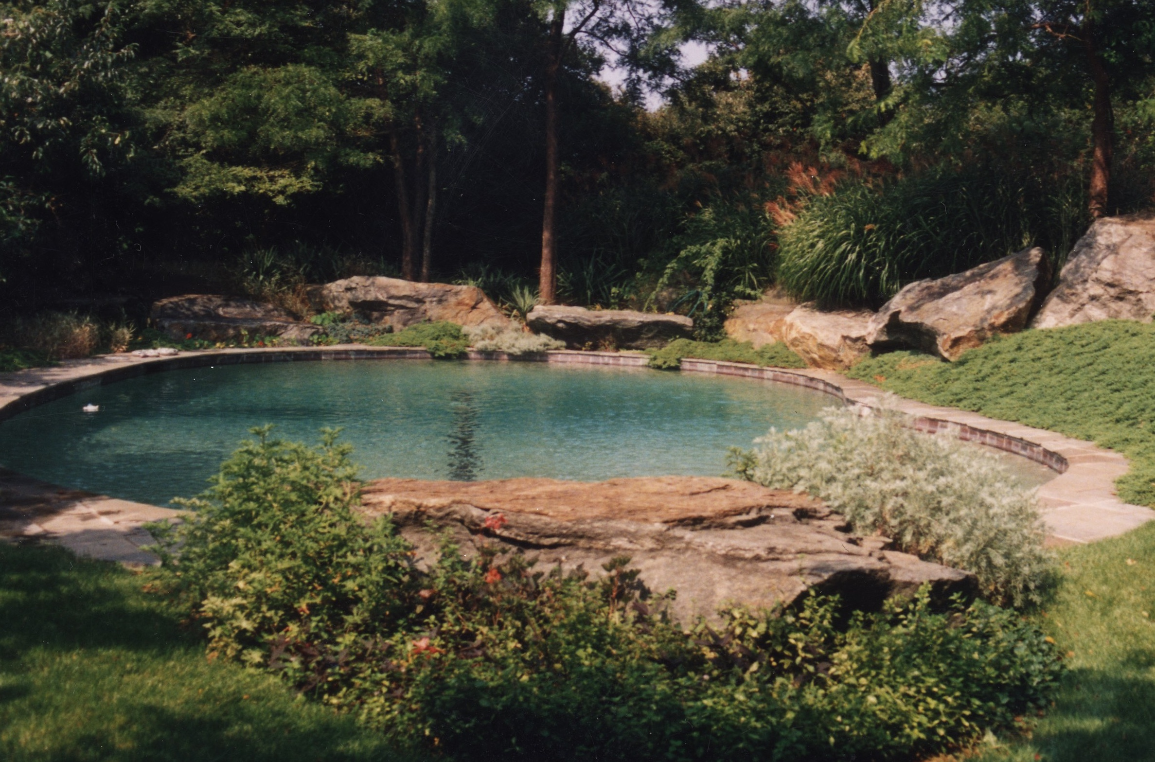 landscaping-hamptons