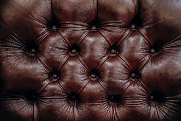 brown-button-comfortable-404155.jpg