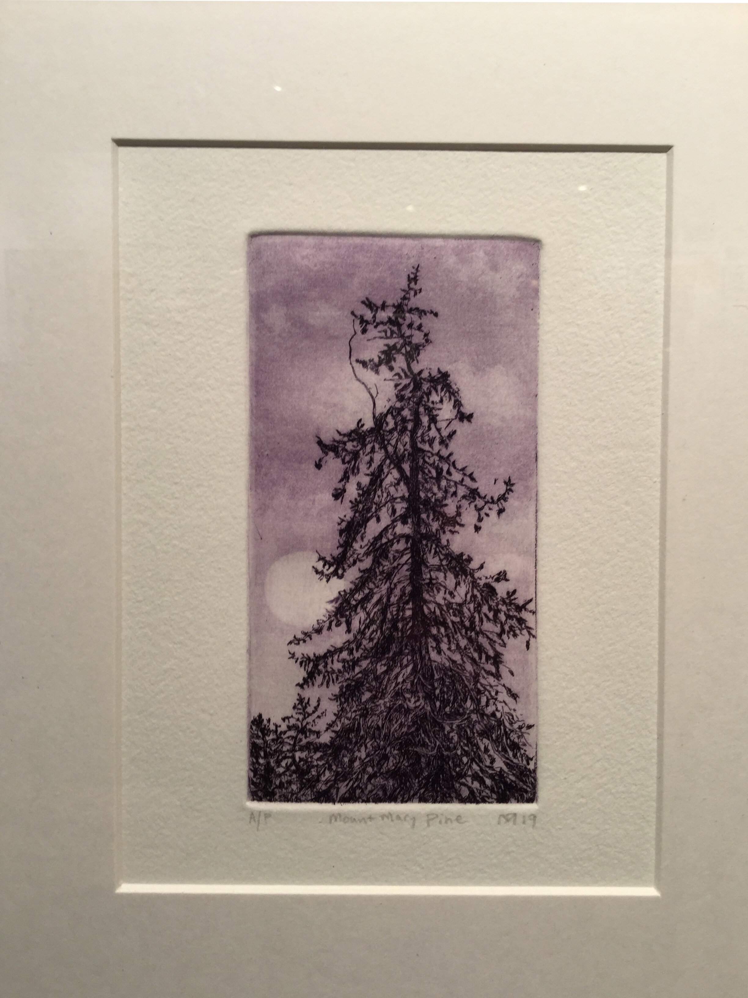 mount-mary-pine-print.jpg