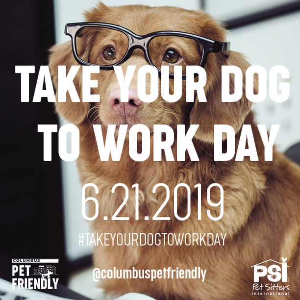 Who's celebrating TYDTW Day this year?  #TakeYourDogToWork #petfriendly