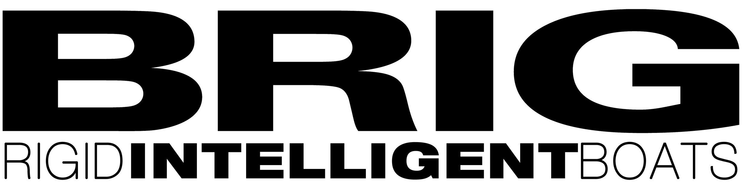 BRIG_Logo_black_intelligent.jpg