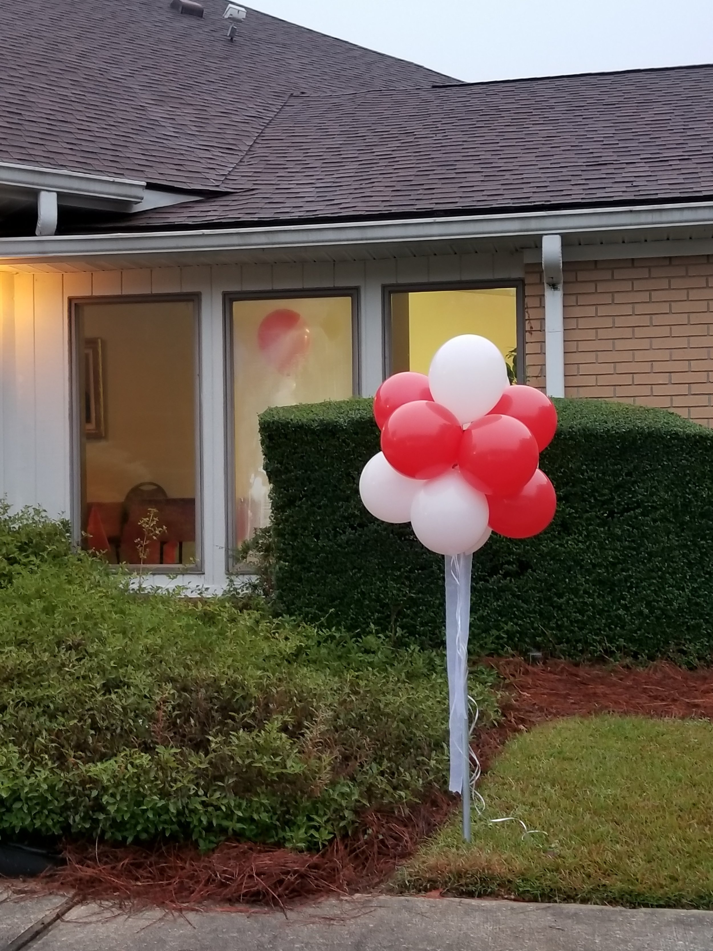 Red and white topiary balloon.jpg