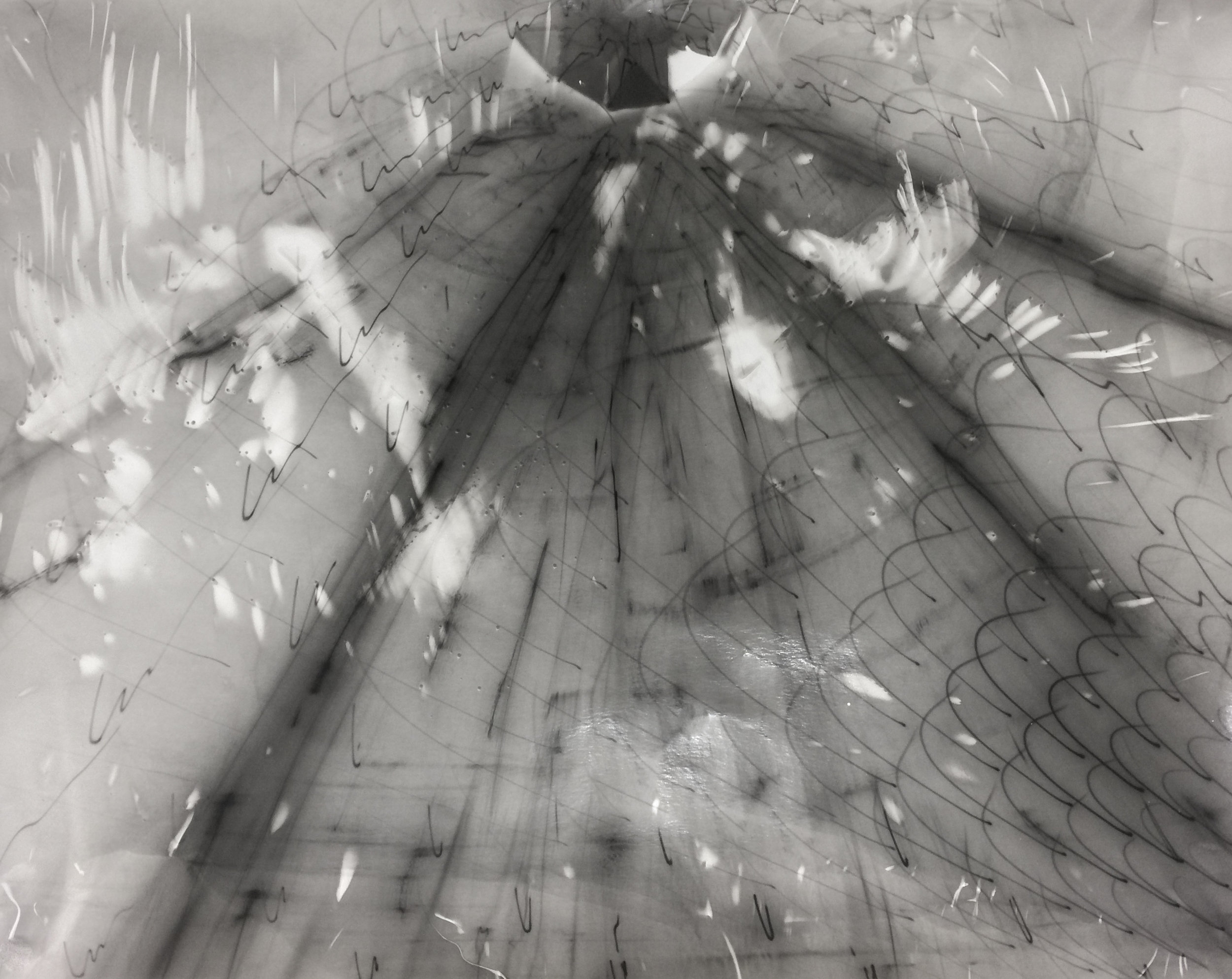 Untitled #1, Electromagnetogram on photo paper, 40 x 60 in. (101.6 x 152.4 cm)