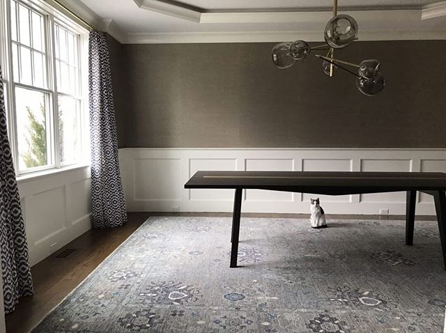 Dining room progress is kitty approved!  Design and 📸 @dagdesignboston Grasscloth @pacific_designs_intl  #notyourgrandmaswallpaper #pacificdesignswallpaper #pacificdesignsgrasscloth #grasscloth #grassclothwallpaper #lovewallpaper #wallpaperlove #wallpaperisthenewblack #luxurywallpaper #designerwallpaper #wallpaperinspo #wallpaperdesign #wallpapershabby #wallpaperdecor #interiordesign #diningroom #interior123 #interior_design #diningroomtable #diningroomdecor #diningroominspo #diningroomideas #smmakelifebeautiful #interior4all #bhghome #wallcoverings #wallpaperenvy #dagdesignboston #formaldiningroom #apartmenttherapy