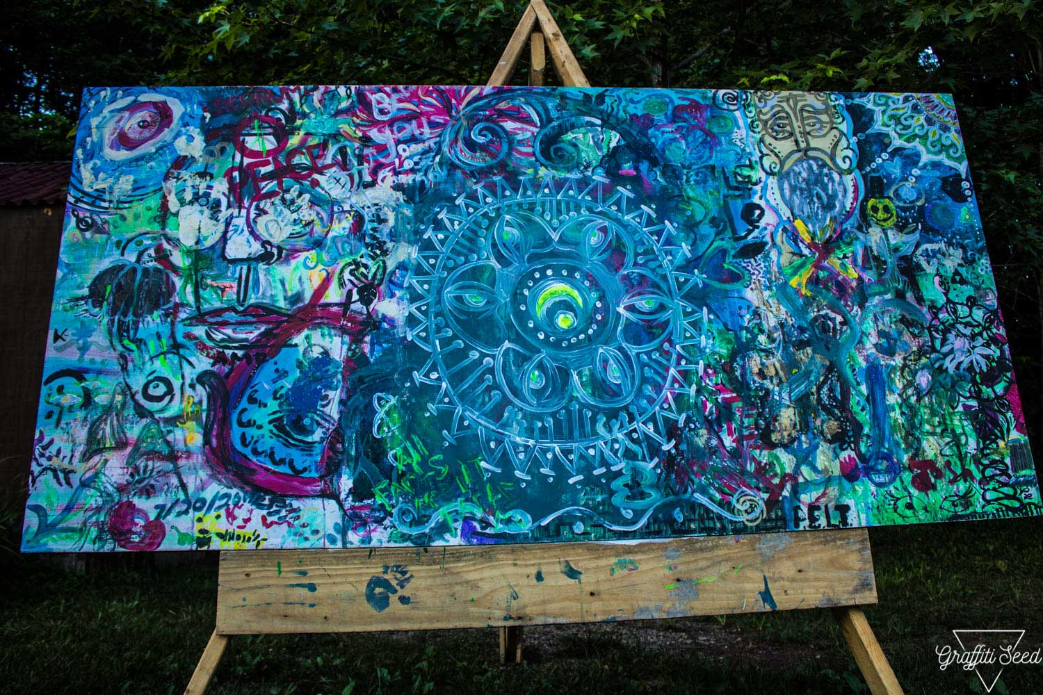 Rootwire Transformational Arts Festival 2018 _ GraffitiSeed.com 97.jpg