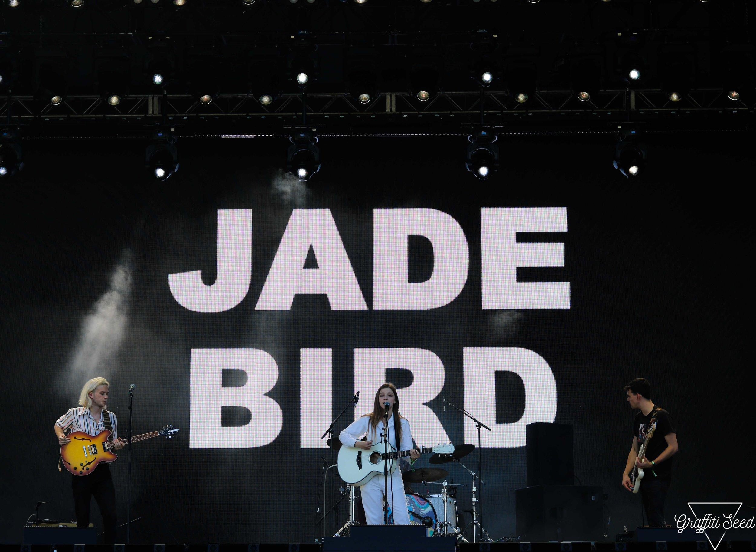 JADE BIRD | Grandoozy 2018 _ www.GraffitiSeed.com 11.jpg