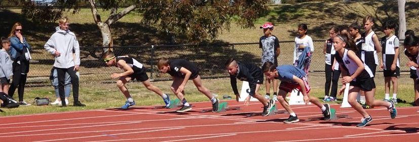fast runners.JPG