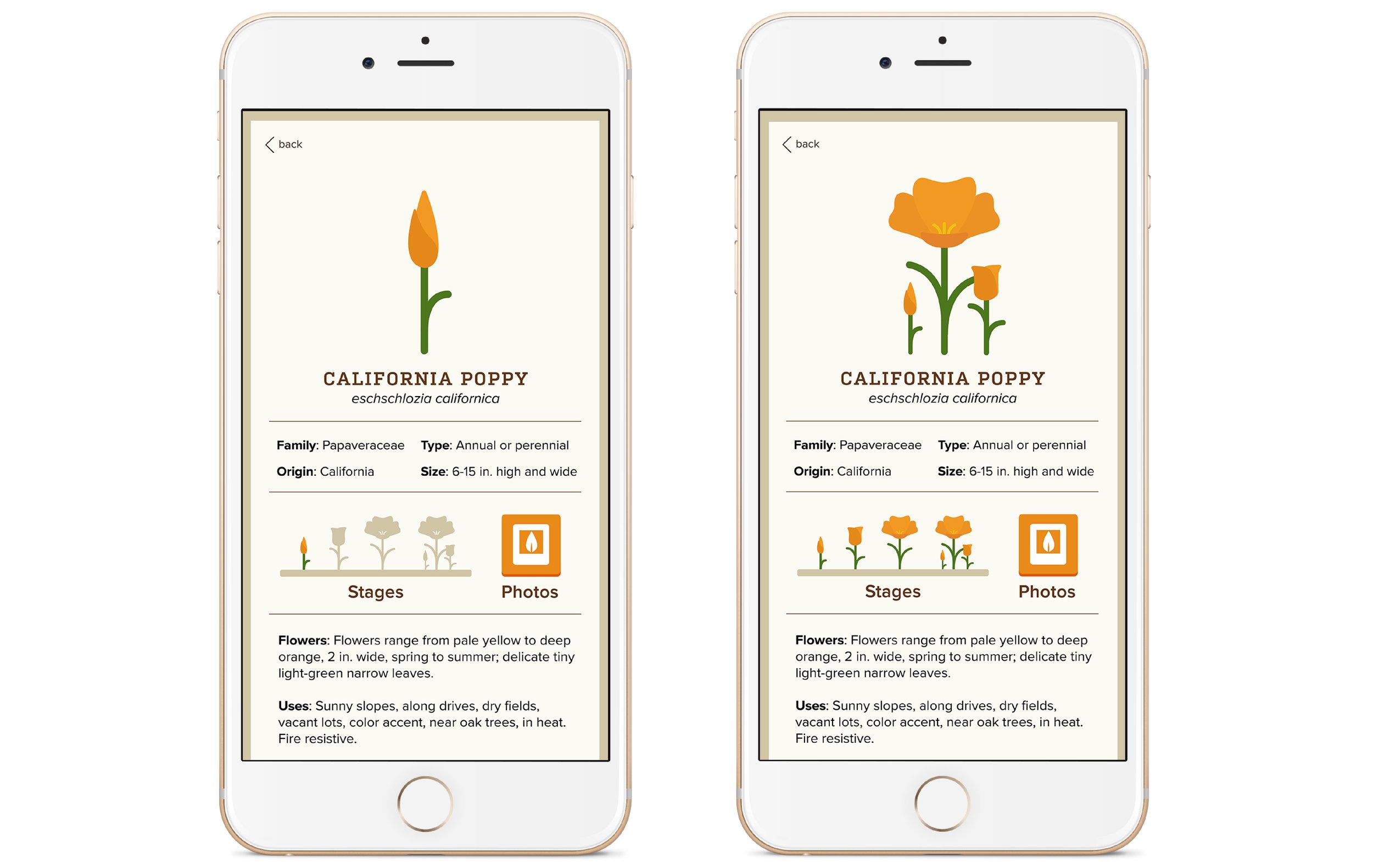 Plant App Presentation-13.jpg