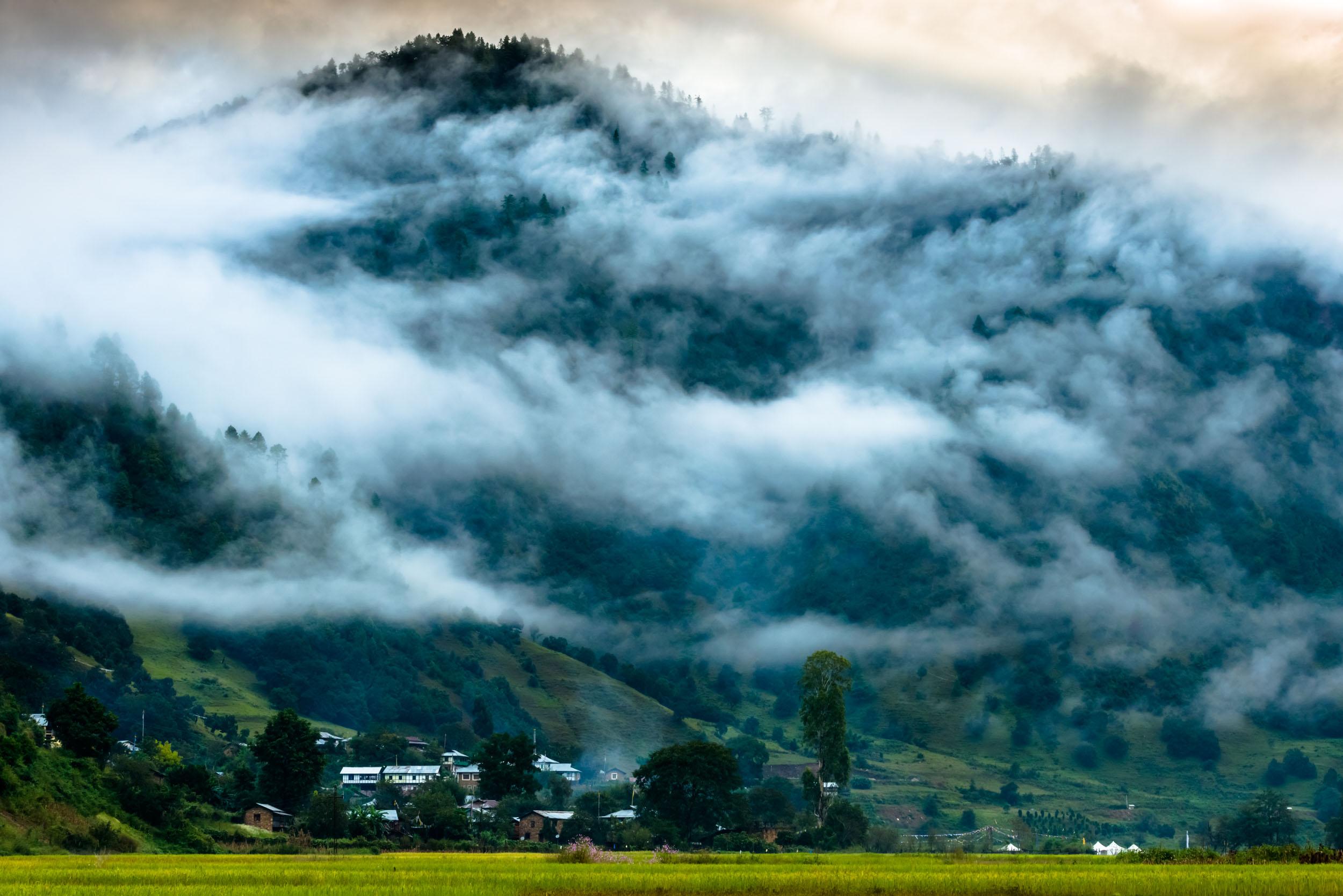 Misty Morning in village