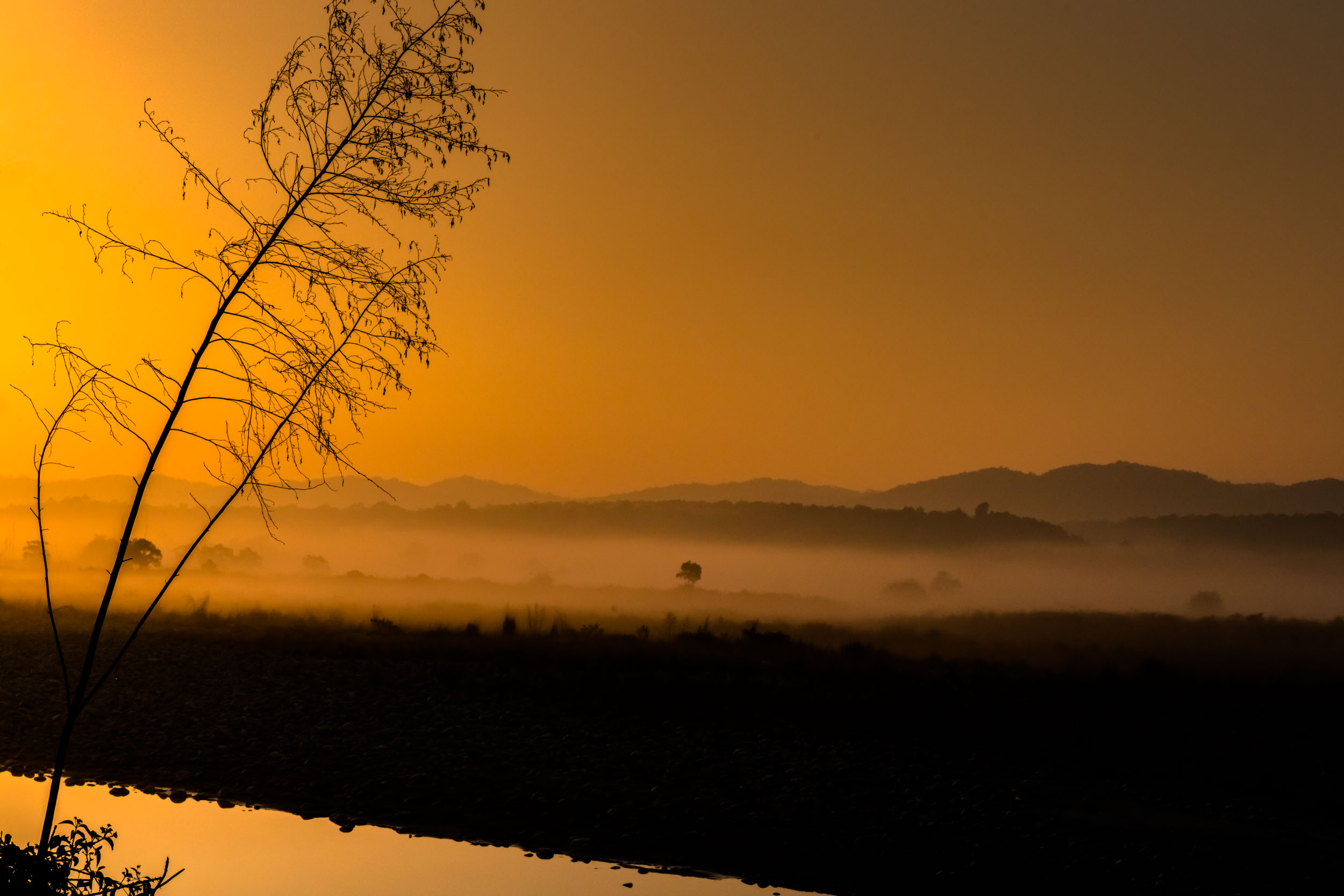 Sunrise with fog on river bank of Ramganga
