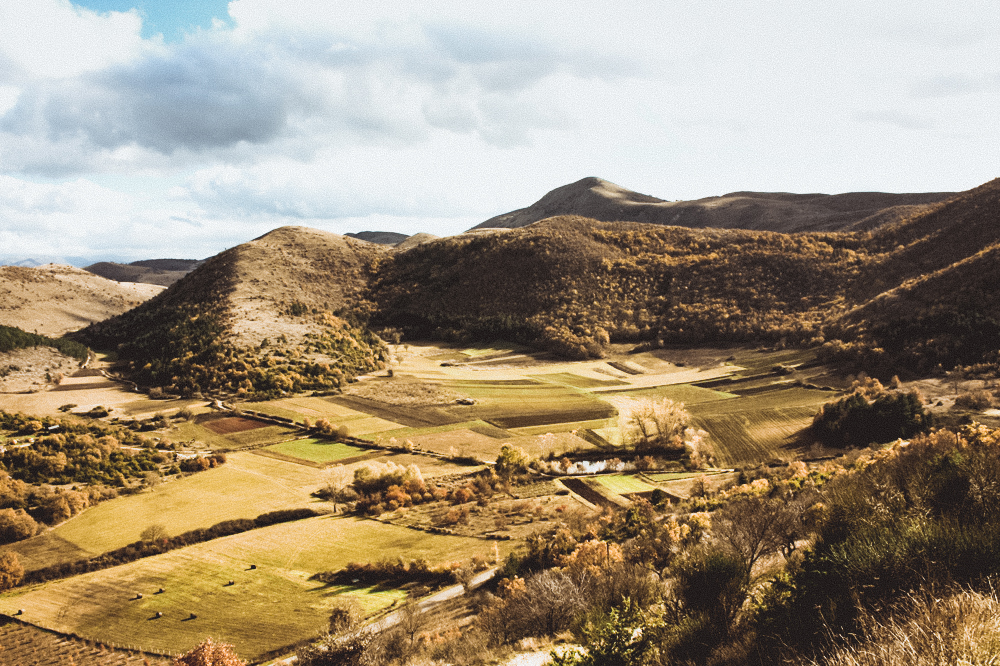 Forage and Cook in Abruzzo, Italy -