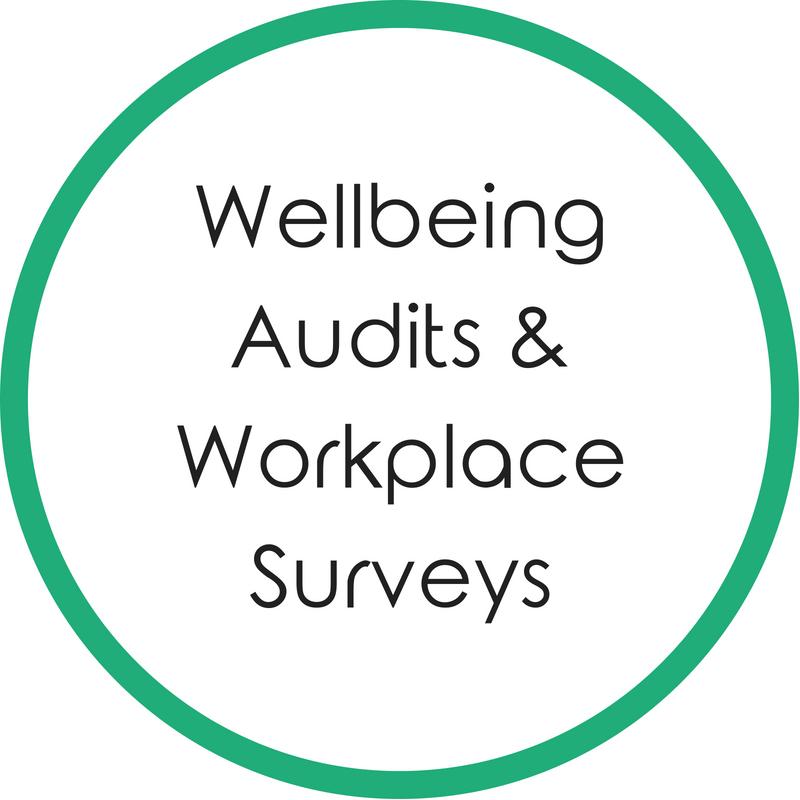 Wellbeing Audits and Workplace Surveys