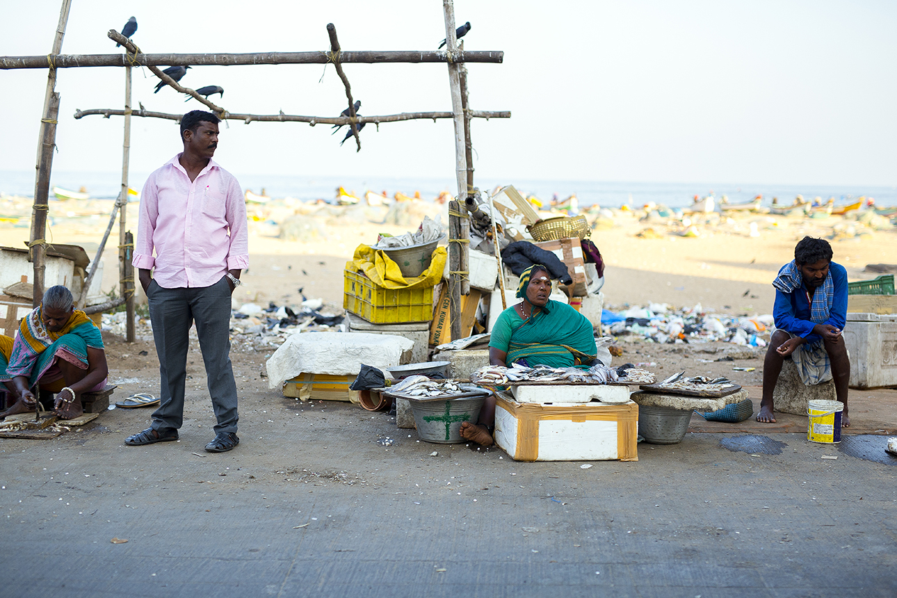 chennai_waterfront_fishmarket.jpg