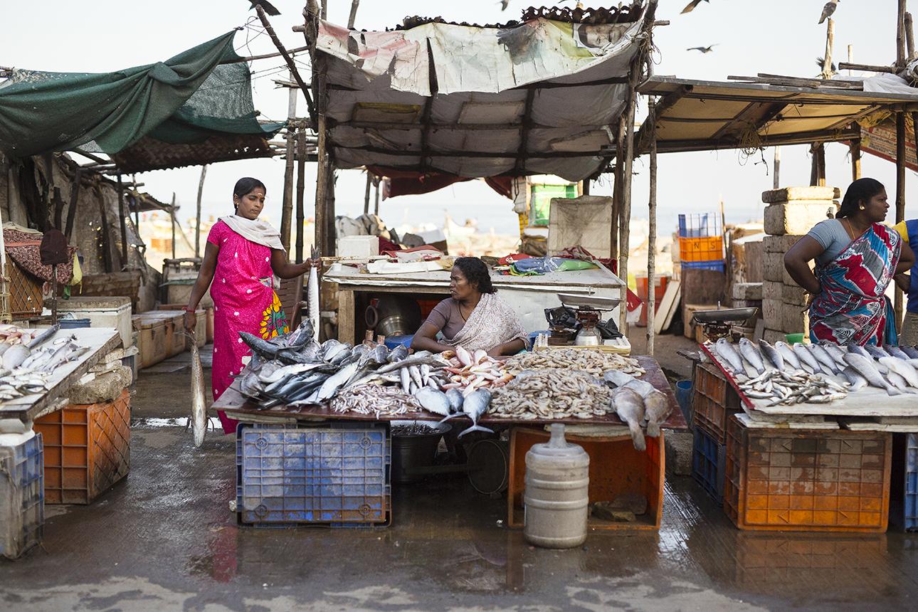 fish_market_chennai.jpg