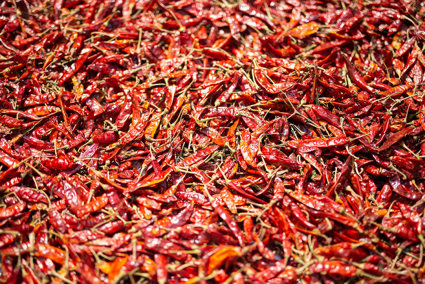 dried_chillies.jpg