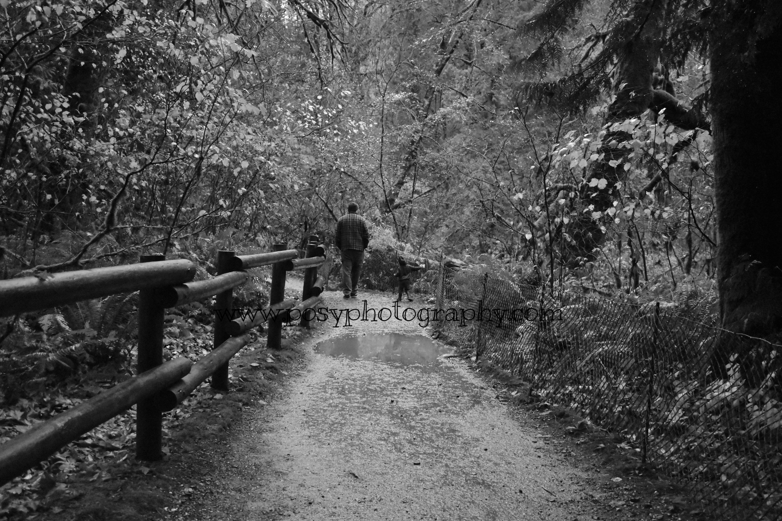The Parent - Portrait of LOVE - Vancouver Island, BC