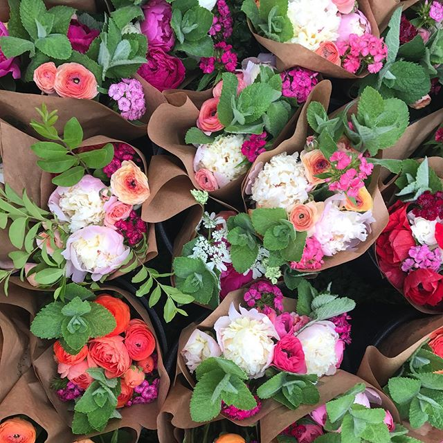 Have you heard @downtowngreenmarket is having a night market this Tuesday night at 6pm?! We will be setup there and will be at our usual spot @paintedhousetn this Tuesday from 3-5pm! So if you need your flower fix then we have you covered tomorrow!  We also have a few spots left for our peony arranging class for the 24th! Sign up is through the Painted House, but if you have any questions just send me a message!