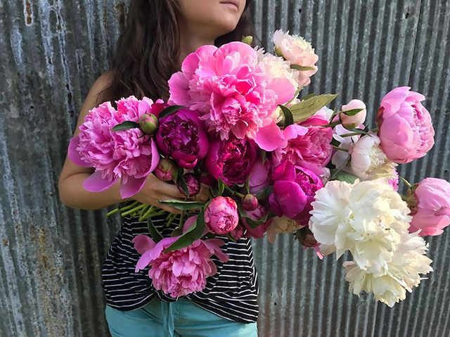 Flower update: sadly we will not be @paintedhousetn tomorrow. Bouquets will still be available @downtowngreenmarket this coming Saturday! I hope everyone is outside with family and friends this Memorial Day to remember our fallen heroes. See you at market Saturday #peonies
