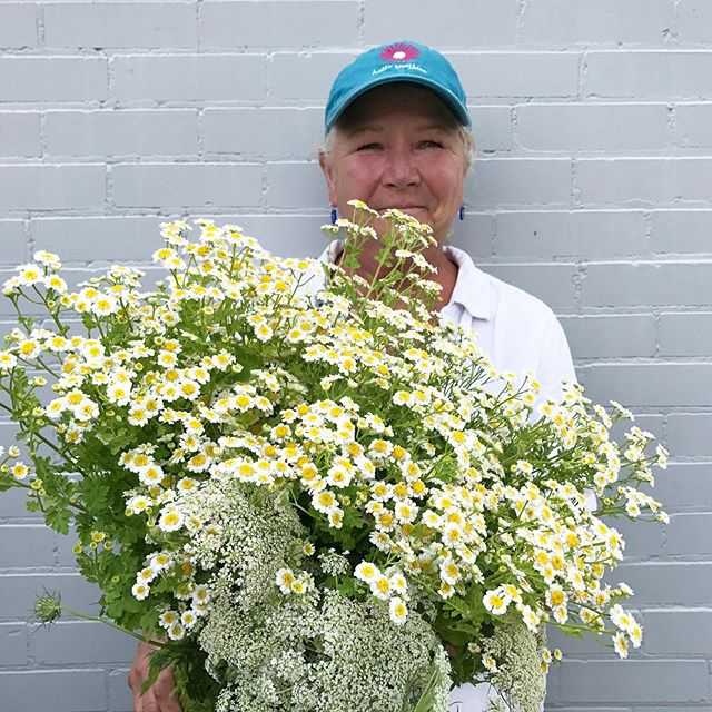 Bunches of blooms for market! Wendy is getting better at having her picture taken for our Instagram. Usually she runs away when she sees a camera, but I'm convincing her she's perfect for pictures. A mixture of spring blooms are available this morning @downtowngreenmarket from 8-12