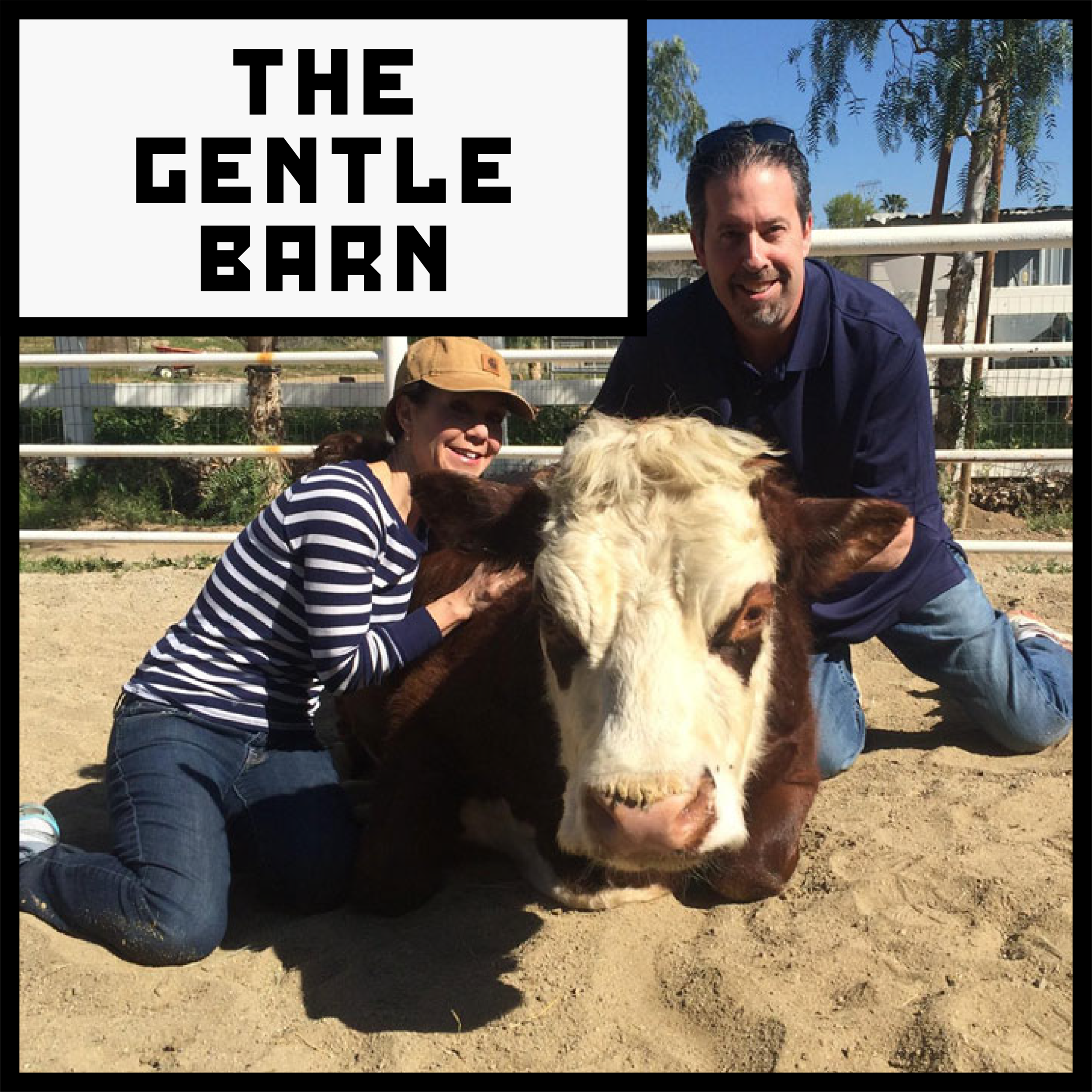 THE GENTLE BARN click.png