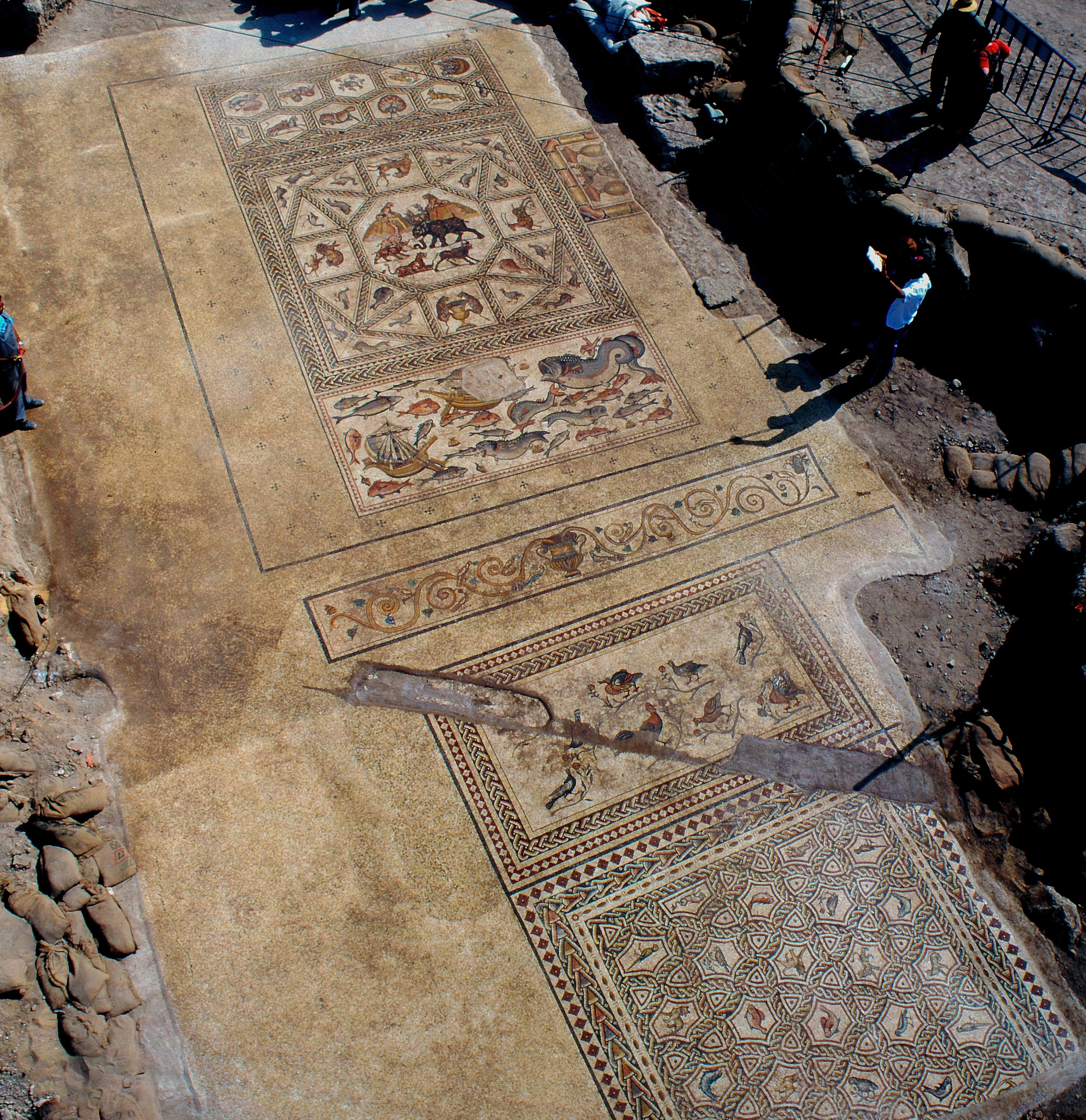 The Lod mosaic that was uncovered in 1996, and was exhibited world-wide.  Photo:IAA