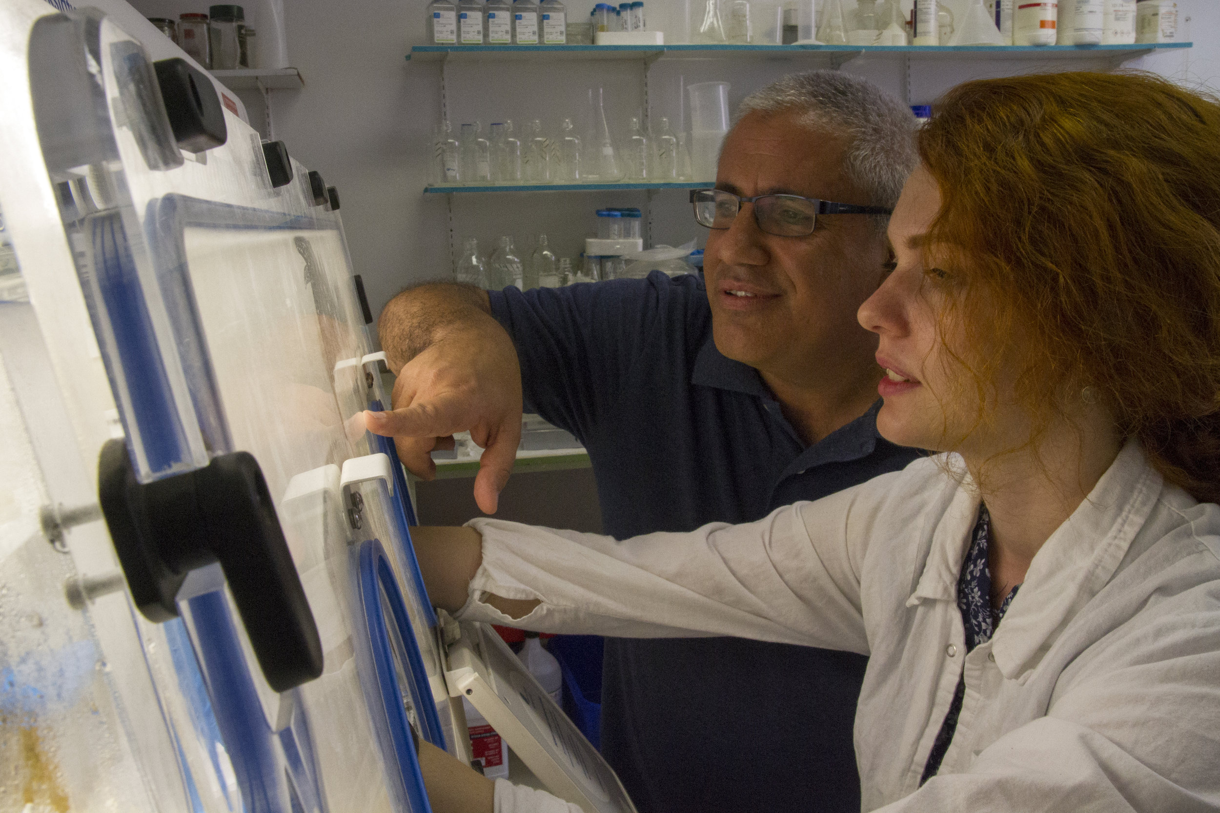 Sampling in the laboratories of the School of Dental Medicine of the Hadassah Medical Center and the Hebrew University of Jerusalem.  Photo: Yaniv Berman, courtesy of the IAA.