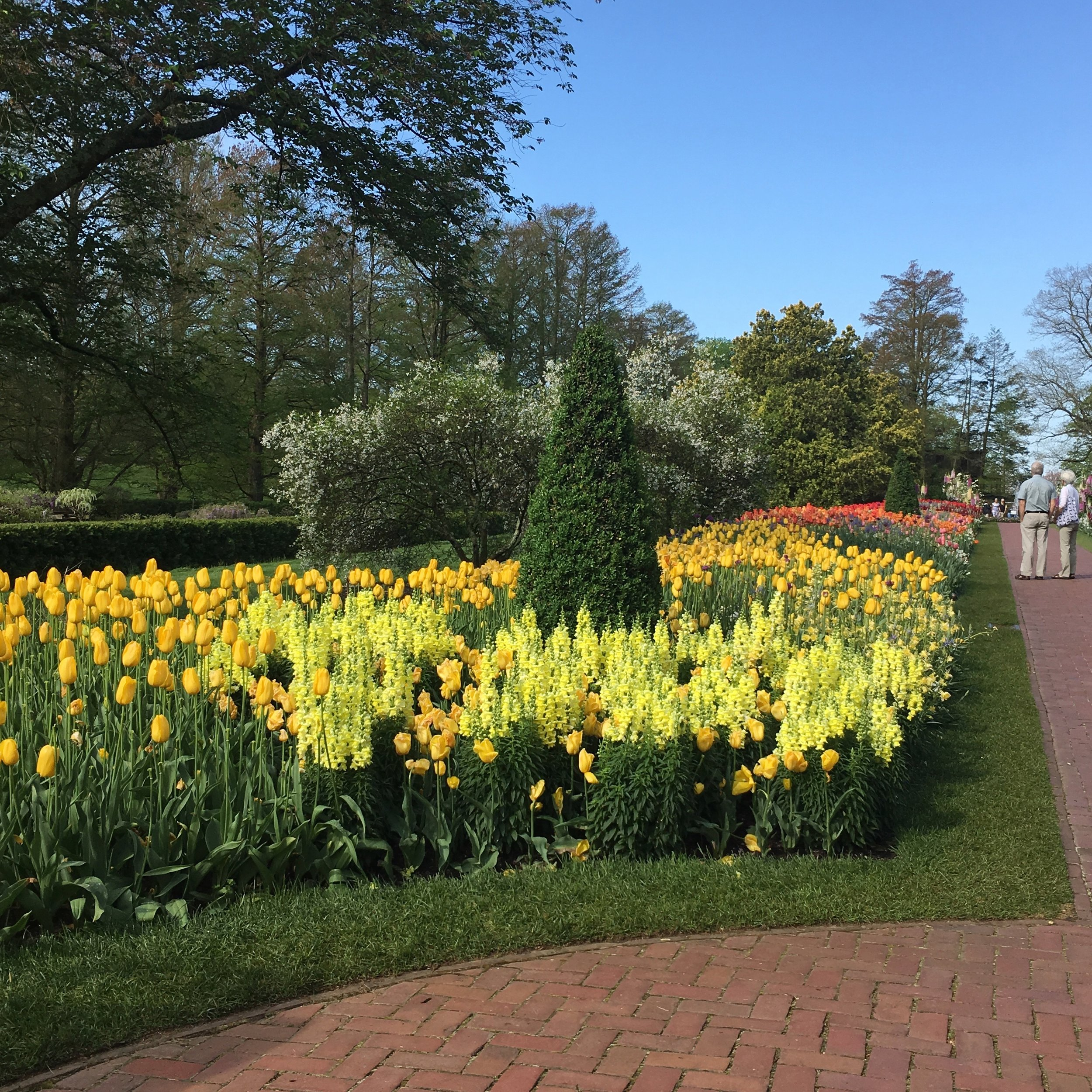 Taking a walk - through Longwood Gardens is also great for both artistic and gardening inspiration.
