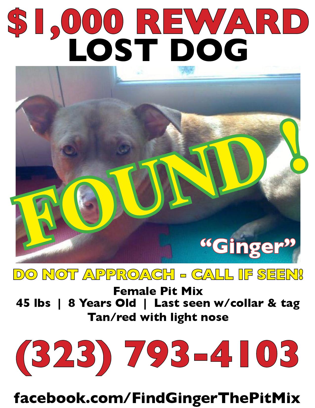 Ginger Reward poster_found.jpg