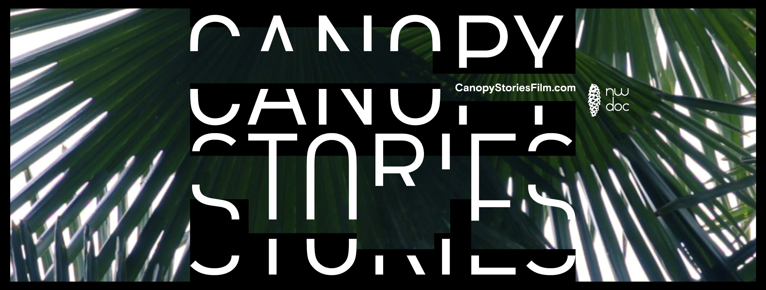 CanopyStories-FacebookCanvas3.jpg