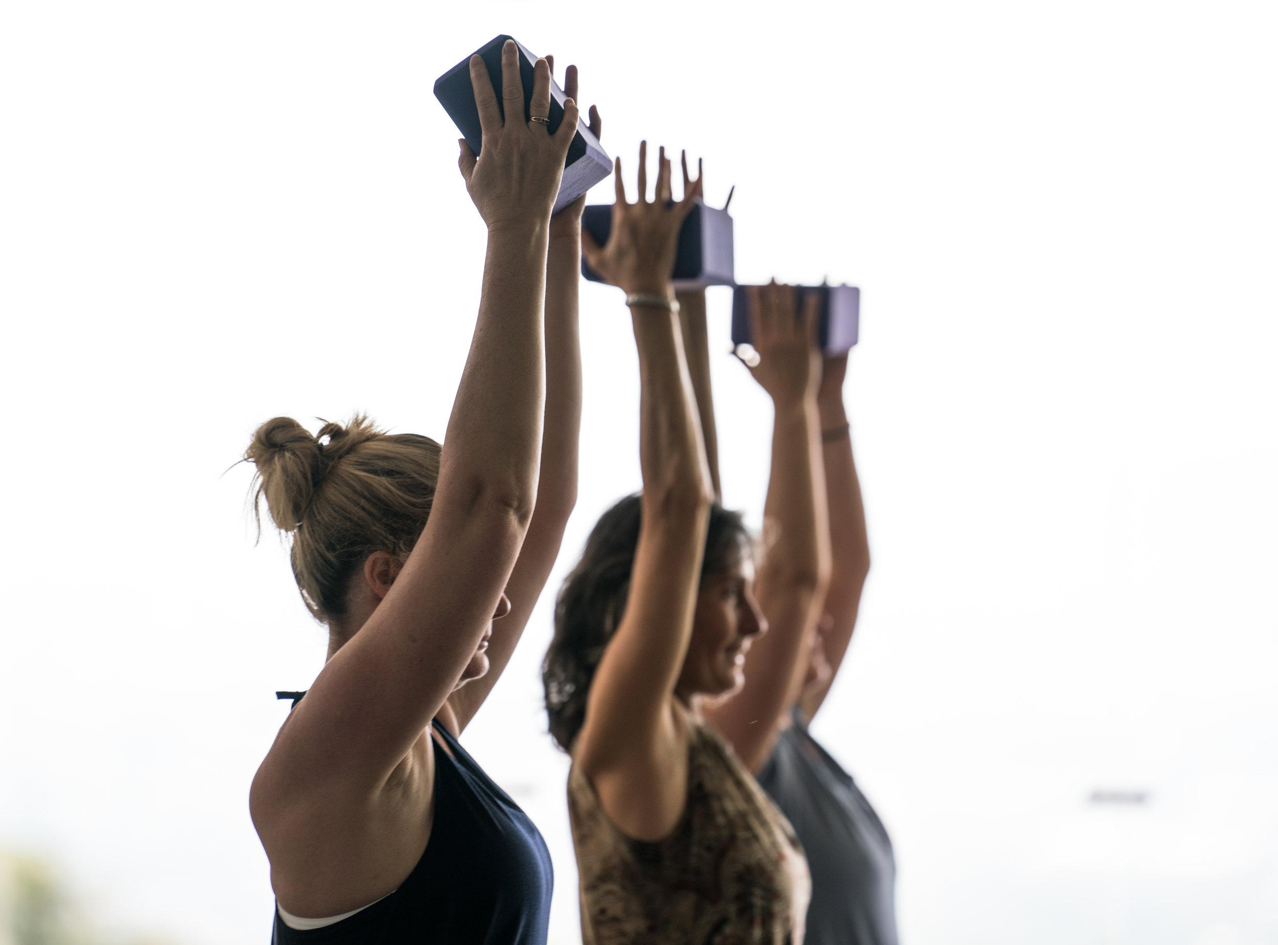 Yoga 300 500 instructor.jpg