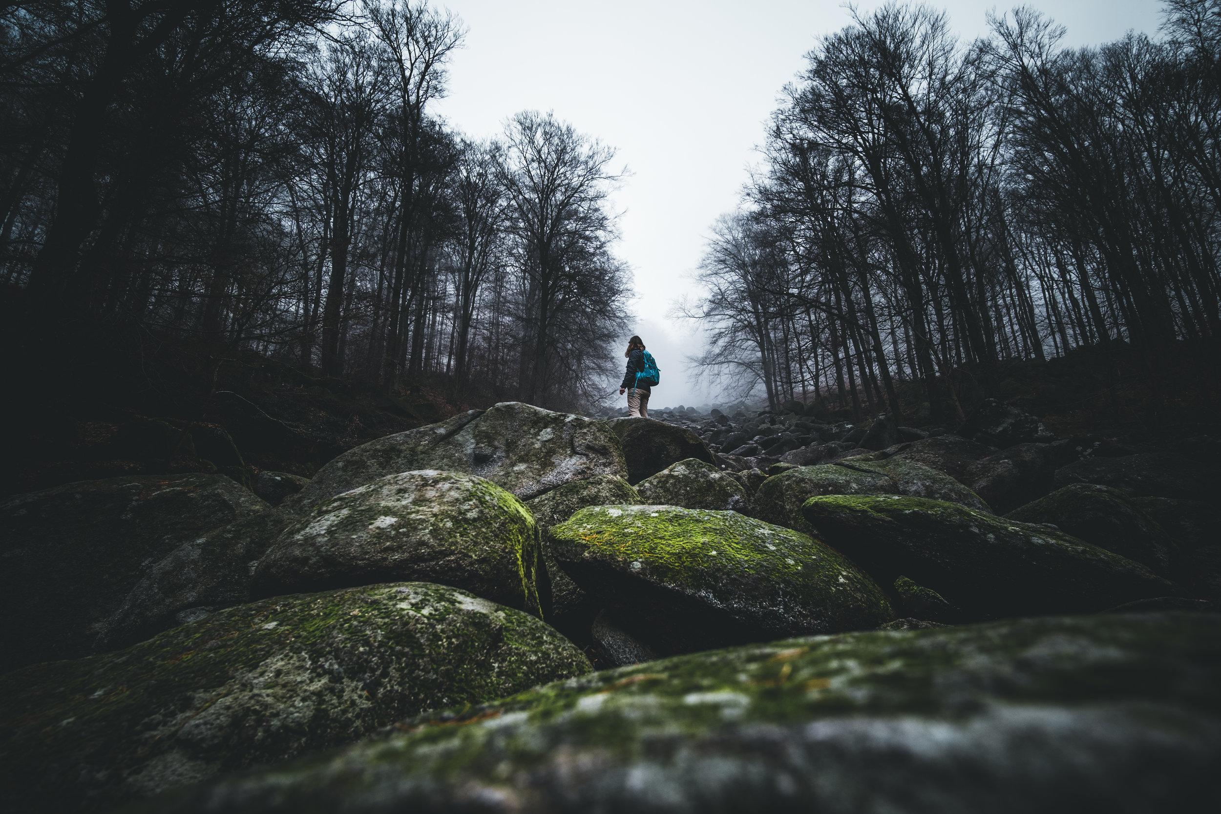Felsenmeer | Reichenbach