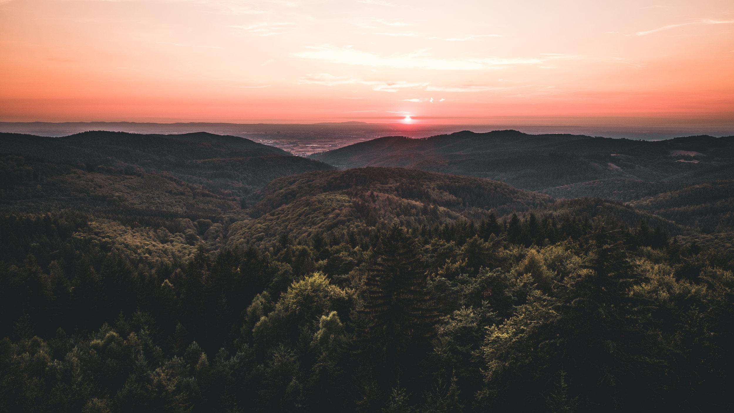 Teltschikturm | Wilhelmsfeld