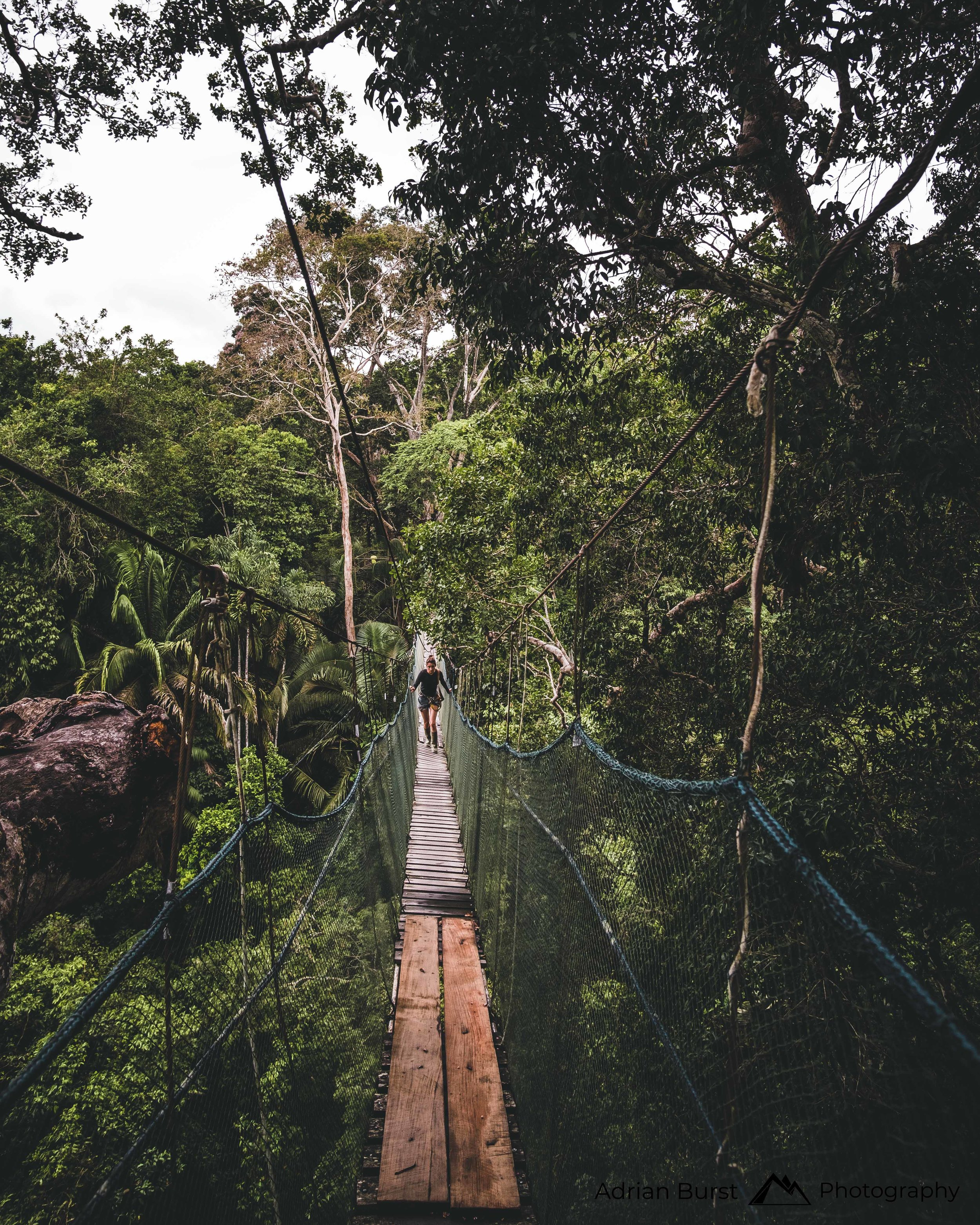 166 | Tambopata national reserve
