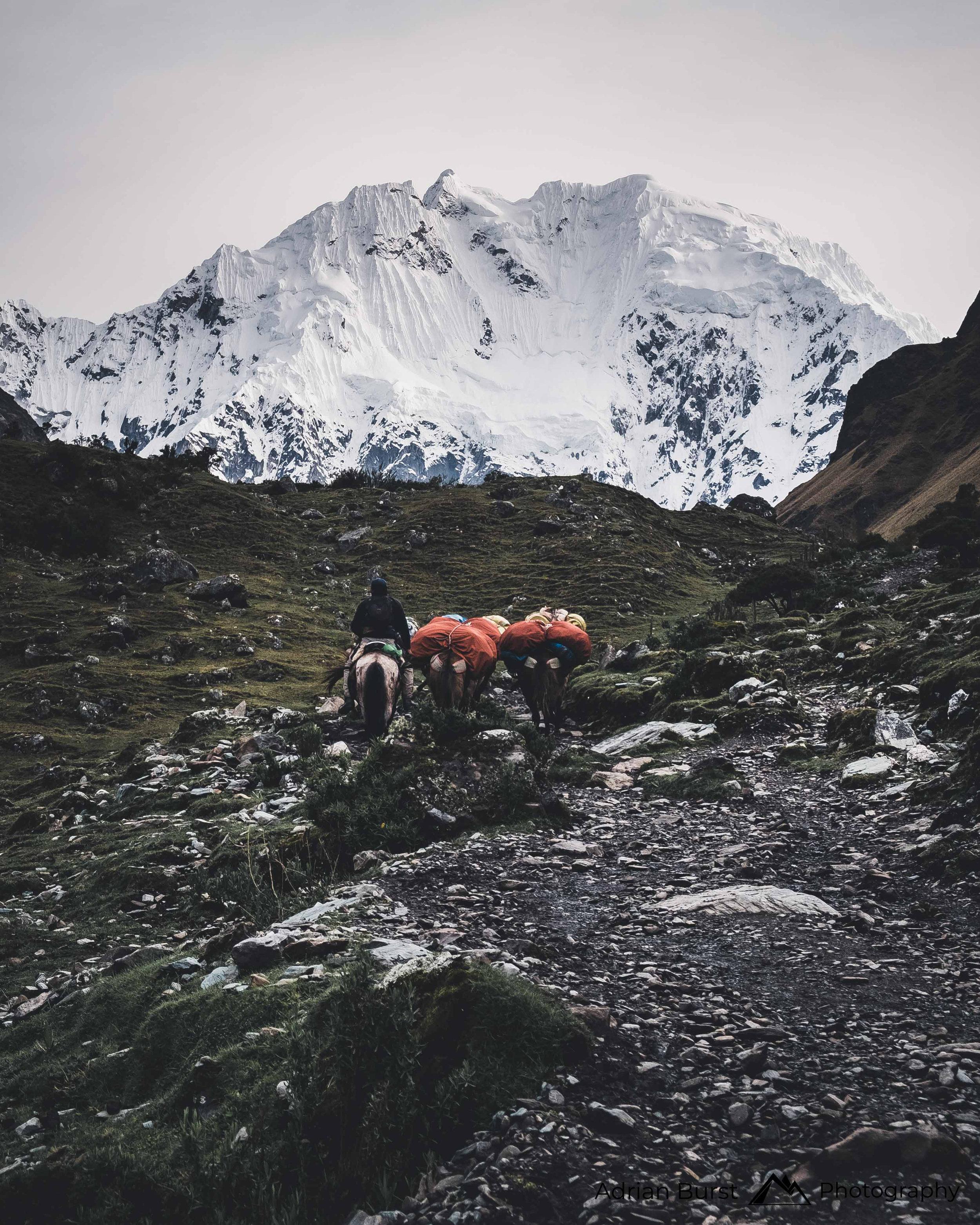 70 | Salkantay Trek, Cordillera Vilcabamba