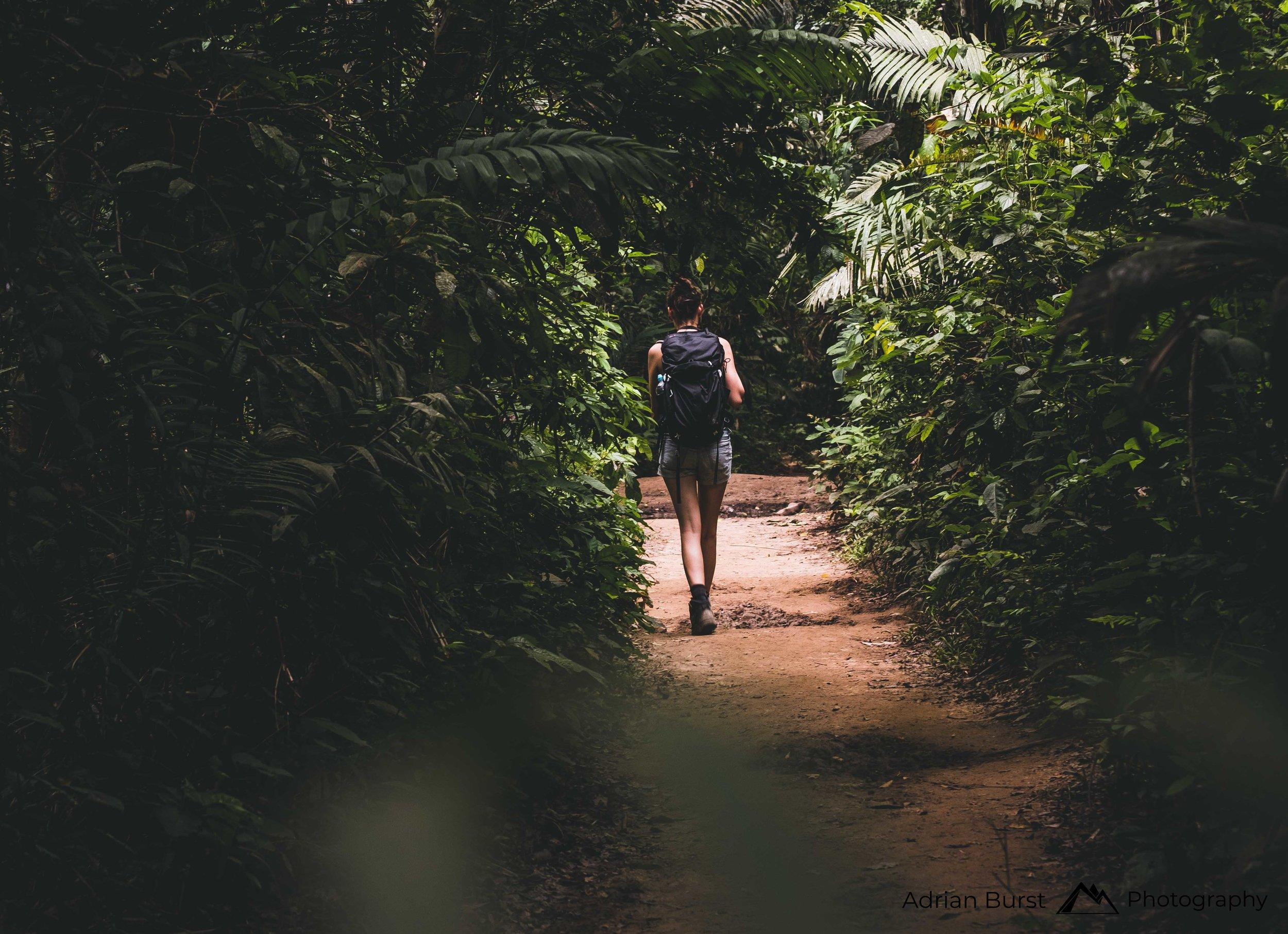 161 | Tambopata national reserve