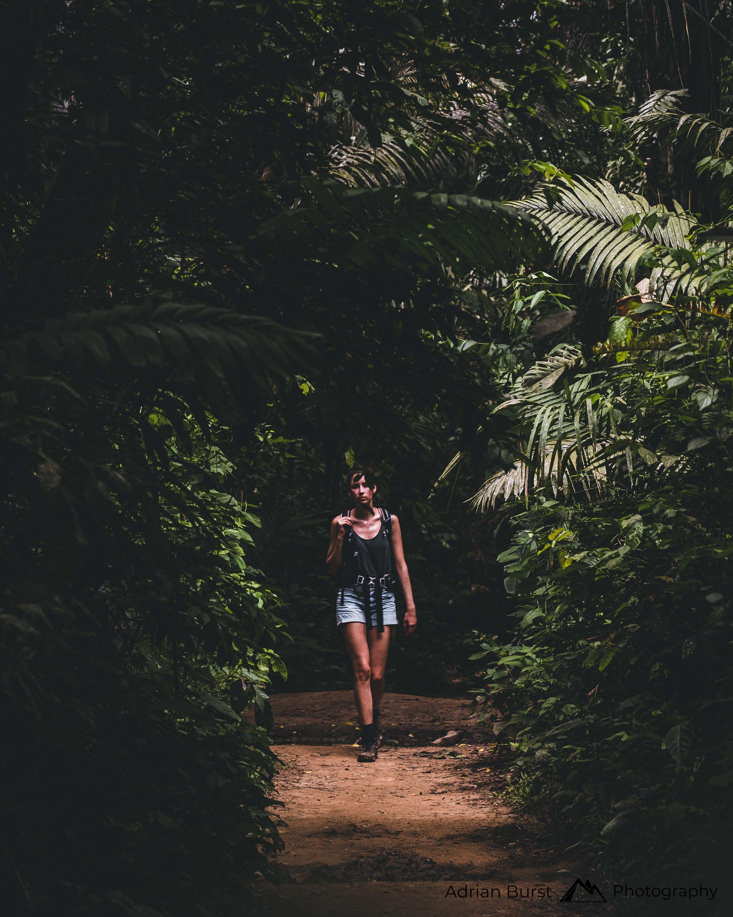 162 | Tambopata national reserve