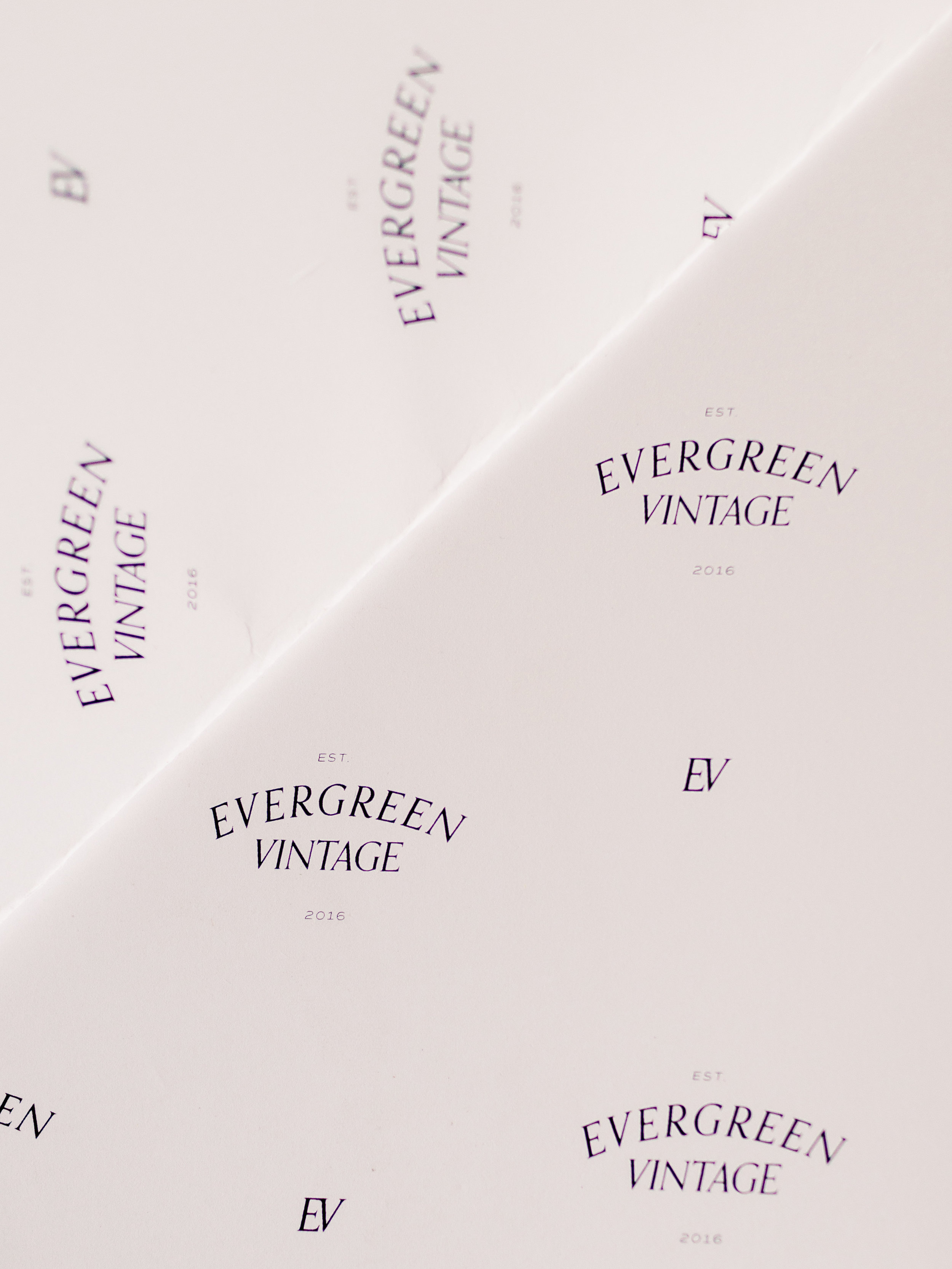 Evergreen Bare Process-58.jpg