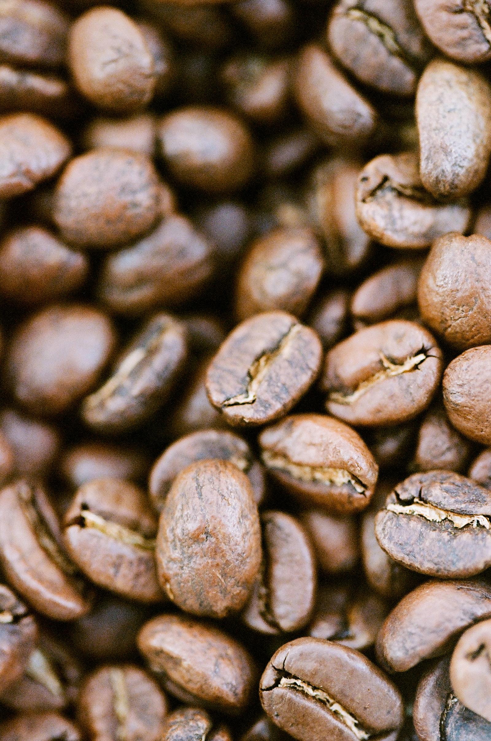 coffee-jodimillerphotography_009 (1).JPG