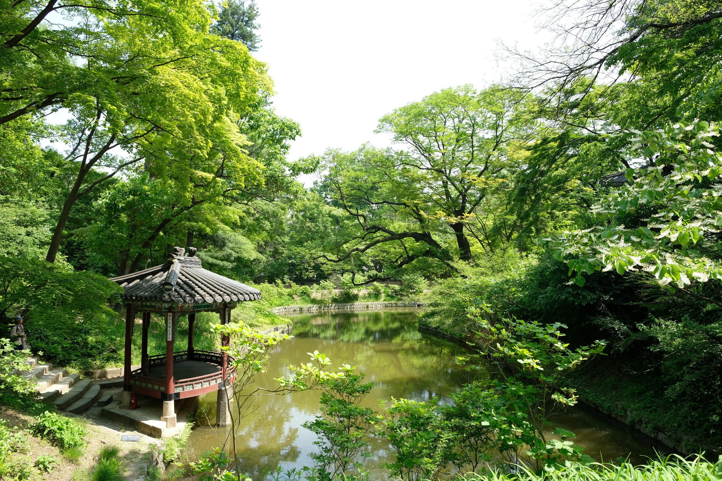 Seoul Changdeokgung Palace5.JPG