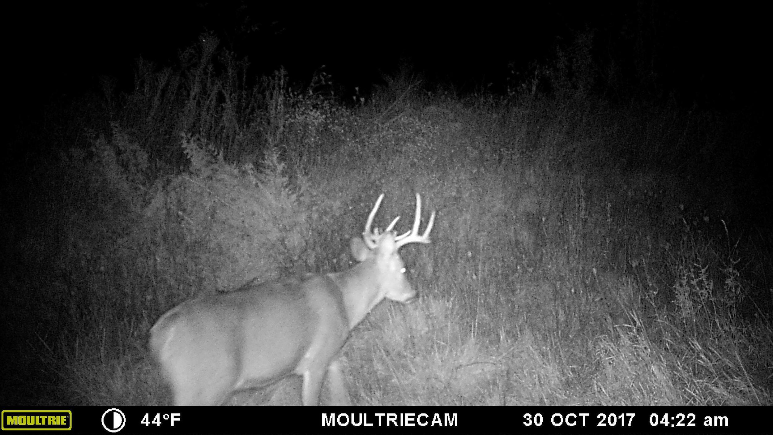Missouri 2017-21.jpg